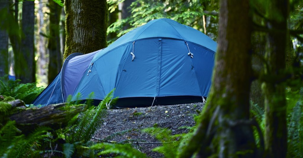 12 Person Tent in Forest